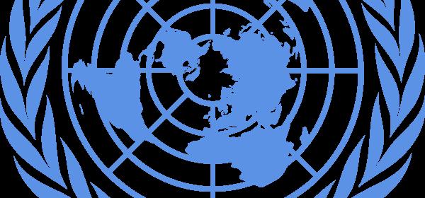 Prsentons Ici Une Stratgie Originale Daccs Des Marchs Mergents Et Que Bien Peu De Chefs Dentreprises Utilisent Pour Faire Affaires Avec L ONU
